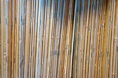 As bordas de publicações encadernadas do papel registram na prateleira em uma biblioteca Fotografia de Stock
