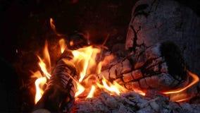As brasas de incandescência quentes de um fogo de madeira video estoque