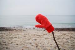 As brisas de mar do inverno refrigeram o elemento gelado da natureza da paisagem Foto de Stock Royalty Free