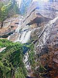 As cachoeiras derrubam a árvore Fotografia de Stock Royalty Free