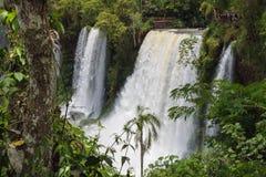 As cachoeiras surpreendentes de Iguazu em Brasil e em Argentina fotografia de stock royalty free
