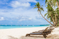 As cadeiras e a palmeira na areia encalham, férias tropicais Fotografia de Stock