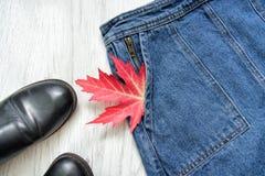 As calças de brim contornam, sapatas pretas e folha de bordo vermelha, colagem conceito elegante Fim acima Foto de Stock Royalty Free