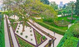 As camas de flor geométricas Fotografia de Stock Royalty Free