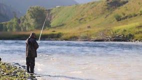 As capturas do pescador pescam contra o contexto de uma paisagem da montanha rugidos do turista do pescador em um rio da montanha filme