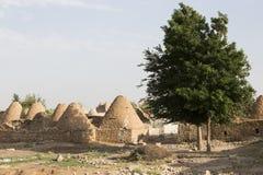 As casas de Harran, Sanliurfa, Turquia Foto de Stock Royalty Free