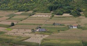 As casas do fazendeiro no meio do campo de milho Fotos de Stock Royalty Free