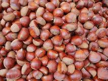 As castanhas, castanhas comestíveis as incomíveis são chamadas sal das castanhas-da-índia roasted, são petiscos saudáveis e delic Fotografia de Stock Royalty Free