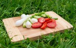 As cebolas verdes e os tomates de cereja frescos na placa de corte de madeira velha, alimento do close up, dispararam fora Fotos de Stock Royalty Free