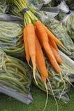 As cenouras orgânicas fecham-se acima Fotos de Stock