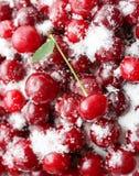 As cerejas maduras são cobertas com o açúcar para enlatar Fundo suculento, brilhante Foto de Stock Royalty Free