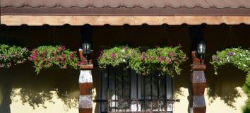 As cestas de suspensão dos petúnias moldaram sombras em paredes da casa Fotografia de Stock