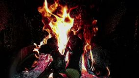 As chamas do fogo real queimam o movimento com ramos da madeira, chaminé no movimento lento, no preto filme