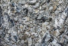 As cinzas texture, podem usar-se como um fundo Imagem de Stock