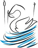 As cisnes estão nadando no lago Imagens de Stock Royalty Free