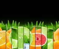 As citrinas coloridas do arco-íris listram a coleção nos vagabundos pretos Fotografia de Stock Royalty Free
