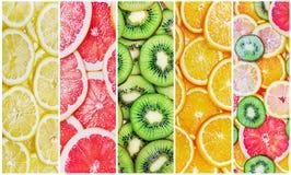 As citrinas cortam fresco Foto de Stock