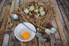 As codorniz aninham-se com ovos manchados, colher, ovo quebrado em uma placa Fotos de Stock
