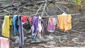 As coisas secas pobres nos ramos em árvores O os sem-abrigo pobre seca suas coisas nas ruas da cidade filme
