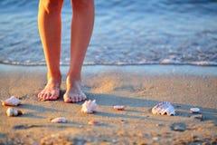 As conchas do mar e os pés da mulher na areia no mar encalham Imagens de Stock Royalty Free