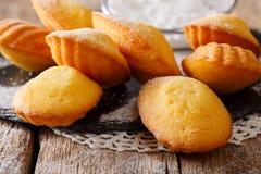 As cookies bonitas descascam o close-up de Madeleine na tabela horizonte Fotos de Stock Royalty Free