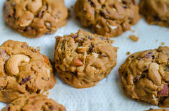 As cookies da grão da posse encontraram-se na bandeja do petisco para fora do forno Fotos de Stock Royalty Free
