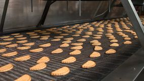 As cookies de biscoito amanteigado recentemente cozidas saem do forno video estoque