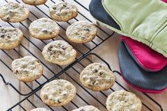 As cookies mornas dos pedaços de chocolate que refrigeram no cozimento do fio submetem Fotos de Stock