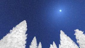 As copas de árvore nevado do abeto contra o céu noturno olham acima Fotografia de Stock Royalty Free