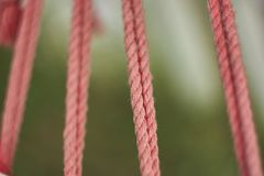 As cordas Fotografia de Stock