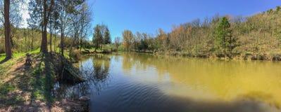 As cores diferentes da água de um pântano pequeno fotografia de stock