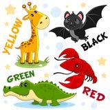 As cores são bastão preto, girafa amarelo, crocodilo verde, caranguejo vermelho fotografia de stock royalty free