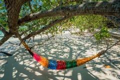 As correias da árvore da rede penduram sobre a praia sob o wid do tempo do dia da máscara Imagem de Stock