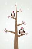 As corujas acoplam-se em chapéus do Natal na filial de árvore. Fotografia de Stock