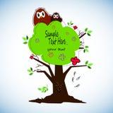 As corujas bonitos dos desenhos animados ajustaram-se para festas do bebê, aniversários e projetos do convite Imagens de Stock Royalty Free
