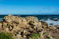 As costas rochosas aproximam o bosque pacífico, península de Monterey, Califórnia, fotografia de stock royalty free