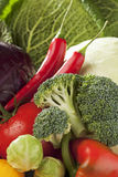 As couves-de-Bruxelas da couve vermelha de couve branca dos brócolis do tomate dos chilis da pimenta de Bell fecham-se acima Fotos de Stock