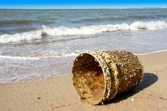 As cracas de ganso uniram à cubeta plástica em uma praia com céu azul Foto de Stock