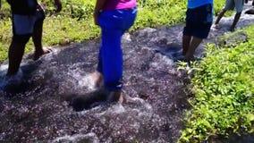 As crianças andam no rio rochoso morno e limpo da água de mola do vulcão filme