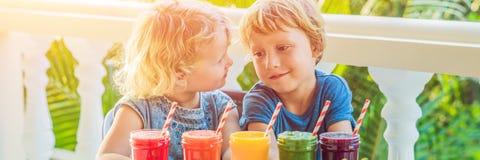As crianças bebem batidos saudáveis coloridos A melancia, a papaia, a manga, os espinafres e o dragão frutificam Batidos, sucos,  Imagens de Stock