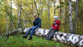 As crianças no parque do outono andam no ar fresco Duas crianças que sentam-se em uma árvore caída Um lugar cênico bonito filme