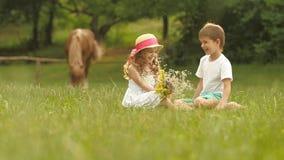 As crianças pequenas estão sentando-se no gramado, a menina têm um ramalhete das flores em suas mãos Movimento lento video estoque