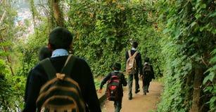 As crianças vão à escola, rapazes pequenos e as meninas com uma trouxa vão à escola Vista traseira Imagens de Stock