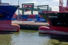 As curvas de dois navios de recipiente do mar fotografia de stock royalty free