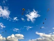 As dúzias dos papagaios são crescentes no céu Fotos de Stock Royalty Free