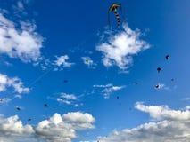 As dúzias dos papagaios são crescentes no céu Fotografia de Stock Royalty Free