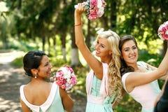 As damas de honra encantadores fotografia de stock