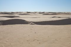 As dunas de areia da areia no açúcar abandonam fotografia de stock