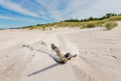 As dunas moventes estacionam perto do mar Báltico em Leba, Polônia Imagem de Stock Royalty Free
