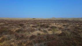 As dunas Winterton-Horsey são um local biológico e geological de 427 hectare de Great Yarmouth científico especial Reino Unido imagem de stock